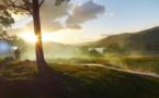 Les cinq minutes de l'héraldique normande — Le Clan Ross d'Écosse…